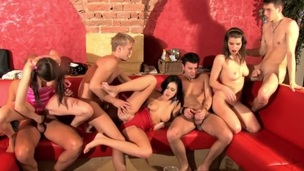 There's no thing greater amount good for those immodest student sex friends than to go for a insane group fucking session